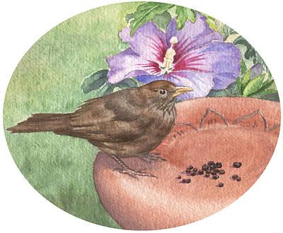 Painting - Young Blackbird After Raisins by Maureen Carter
