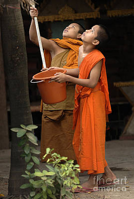 Photograph - Young Buddhist Monks Laos 2 by Bob Christopher