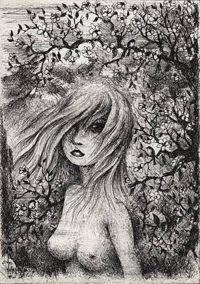 Tree Blossoms Drawing - Young Cherry Blossom by Rachel Christine Nowicki