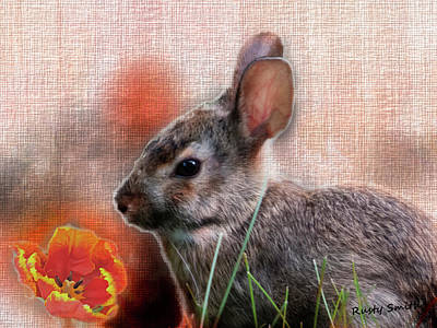 Digital Art - Young Cottontail Rabbit And The Tulip by Rusty R Smith