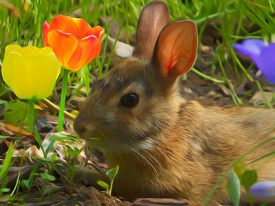 Digital Art - Young Conttontailed Rabbit Feeding Near The Tulips. by Rusty R Smith