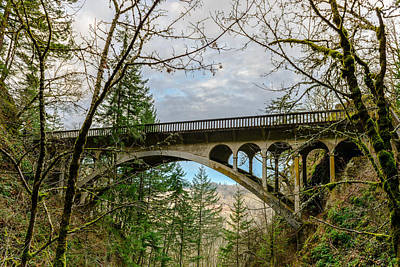 Photograph - Young Creek Bridge by Michael Scott