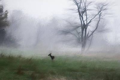 Young Deer And Tree Art Print