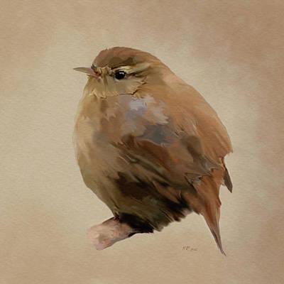 Painting - Young Female Blackbird - Turdus Merula by Bamalam  Photography