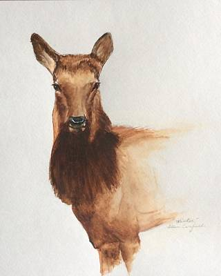 Painting - Young Female Elk by Ellen Canfield
