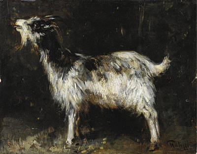 Giuseppe Palizzi Painting - Young Female Goat by Giuseppe Palizzi