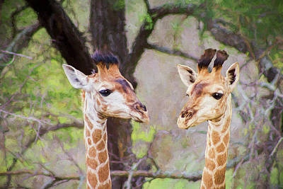 Painting - Young Giraffes - Painted by Ericamaxine Price