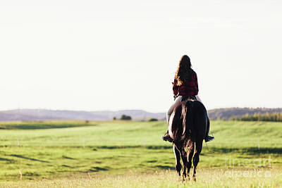 Photograph - Young Girl Sitting On A Bay Horse, Riding On The Field. by Michal Bednarek