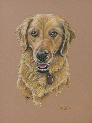 Pastel - Young Golden Retriever by Mary Dove