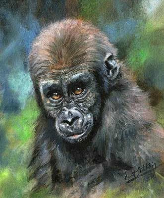 Gorillas Painting - Young Gorilla by David Stribbling