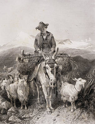 Rural Scene Drawing - Young Granada Goatherder Riding A by Vintage Design Pics
