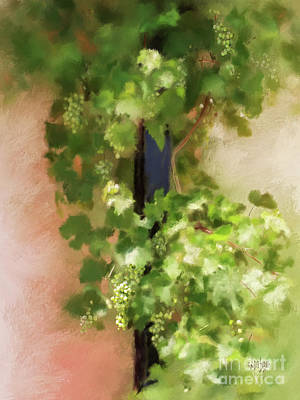 Grape Digital Art - Young Greek Wine by Lois Bryan
