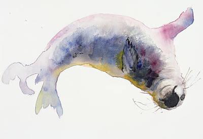 Pup Drawing - Young Grey Seal by Mark Adlington