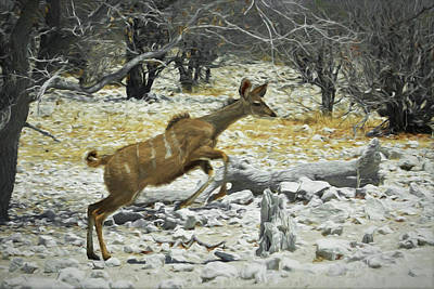 Digital Art - Young Kudu Jump by Ernie Echols