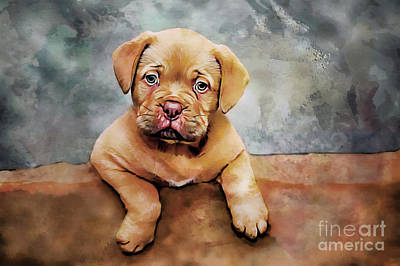 Puppies Mixed Media - Young Mastiff Portrait by Mylinda Revell