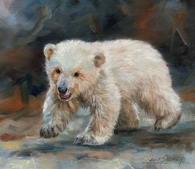 Bear Cub Painting - Young Polar Bear by David Stribbling