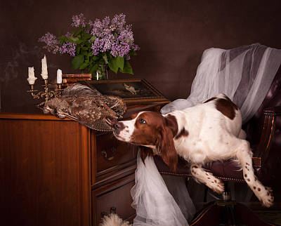Irish Setter Painting - Young Setter With Lilac... by Tanya Kozlovsky