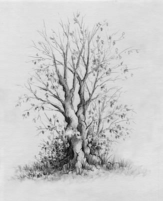 Young Tree Art Print by Rachel Christine Nowicki