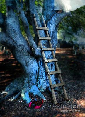 Young Woman Climbing A Tree Art Print by Jill Battaglia
