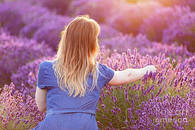 Photograph - Young Woman Picking Lavender Flowers At Sunset. by Michal Bednarek