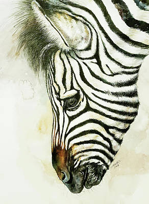 Painting - Young Zebra Becky by Arti Chauhan