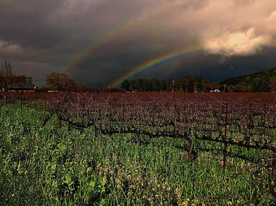 Mars Lasar Photograph - Yountville Double Rainbow by Cadence Spalding