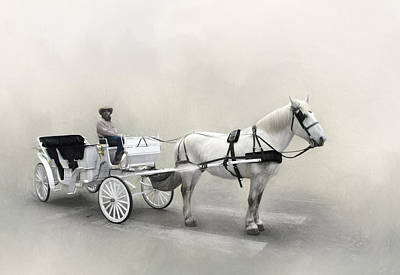 Photograph - Your Carriage Awaits by David and Carol Kelly
