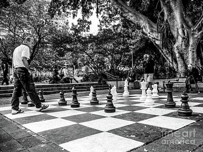 Photograph - Your Move by Lexa Harpell
