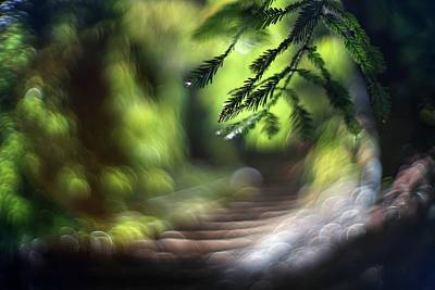 Photograph - Your Stairway Lies On The Whispering Wind by Peter Thoeny