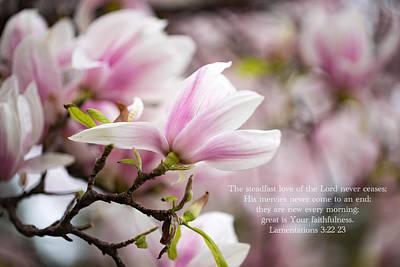 Photograph - Your Steadfast Love by Lynn Hopwood