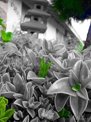 Selective Color Digital Art - Your Turn To Stand Out by Glenn McCarthy Art and Photography