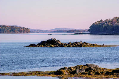 Penobscot Bay Digital Art - Your View by Terry Davis