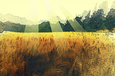 Wall Art - Photograph - The Wheat And Its Sun by Abstract Paintings