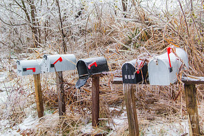 Photograph - You've Got Mail by Jim McCain