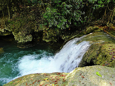 Photograph - Ys Falls Jamaica II by Debbie Oppermann
