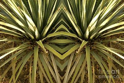 Mixed Media - Yucca Abstract by Bob Pardue