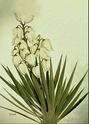 Painting - Yucca - Agavaceae by Michael Earney