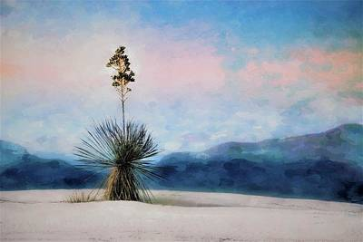Mixed Media - Yucca's Painted Sunset Sky by Barbara Chichester