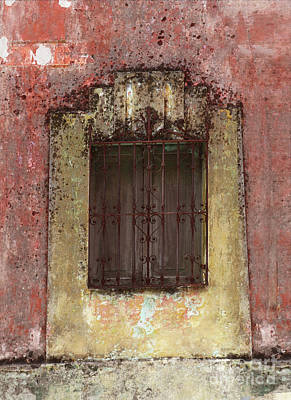 Digital Art - Yuctanan Adventure by Susan Vineyard