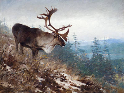 Caribou Painting - Yukon King Caribou by Celestial Images