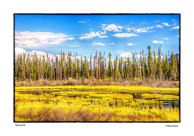 Photograph - Yukon Marsh by R Thomas Berner