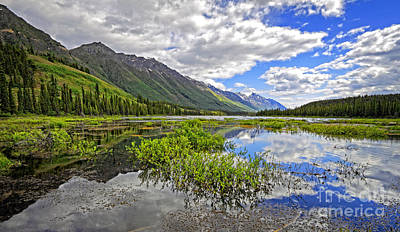 Photograph - Yukon Mountains And Wetlands by Charline Xia