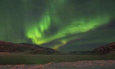 Photograph - Yukon Norhern Lights 1  by Phyllis Spoor