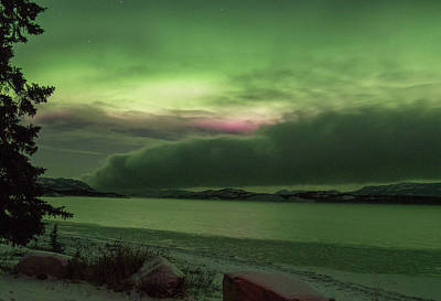 Photograph - Yukon Norhern Lights 3 by Phyllis Spoor