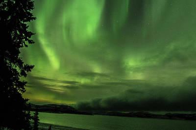 Photograph - Yukon Norhern Lights 4 by Phyllis Spoor