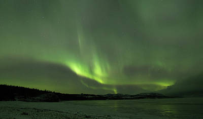 Photograph - Yukon Norhern Lights 5 by Phyllis Spoor