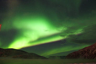 Photograph - Yukon Norhern Lights P1 by Phyllis Spoor
