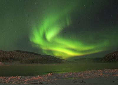 Photograph - Yukon Norhern Lights P4 by Phyllis Spoor