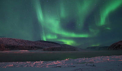 Photograph - Yukon Northern Lights 8 by Phyllis Spoor