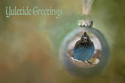 Photograph - Yuletide Greetings by Donna Kennedy